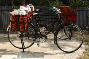 Tea Sellers? Bicycles